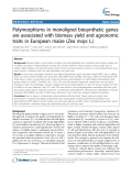 """báo cáo khoa học: """"  Polymorphisms in monolignol biosynthetic genes are associated with biomass yield and agronomic traits in European maize (Zea mays L.)"""""""