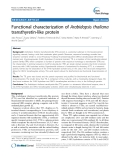"báo cáo khoa học: ""  Functional characterization of Arabidopsis thaliana transthyretin-like protein"""