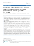 "báo cáo khoa học: ""  Identification and evaluation of new reference genes in Gossypium hirsutum for accurate normalization of real-time quantitative RT-PCR data"""