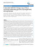 "báo cáo khoa học: ""  A saturated SSR/DArT linkage map of Musa acuminata addressing genome rearrangements among bananas"""