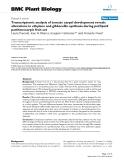 "báo cáo khoa học: ""  Transcriptomic analysis of tomato carpel development reveals alterations in ethylene and gibberellin synthesis during pat3/pat4 parthenocarpic fruit set"""