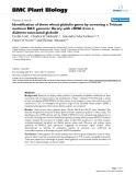 "báo cáo khoa học: ""  Identification of three wheat globulin genes by screening a Triticum aestivum BAC genomic library with cDNA from a diabetes-associated globulin"""