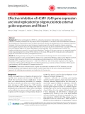 "Báo cáo y học: "" Effective inhibition of HCMV UL49 gene expression and viral replication by oligonucleotide external guide sequences and RNase P"""