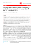 "Báo cáo y học: ""Synthetic rabbit-human antibody conjugate as a control in immunoassays for immunoglobulin M specific to hepatitis E virus"""