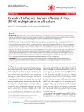 """Báo cáo y học: """"Caveolin-1 influences human influenza A virus (H1N1) multiplication in cell culture"""""""