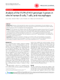 "Báo cáo y học: ""Analysis of the 5'UTR of HCV genotype 3 grown in vitro in human B cells, T cells, and macrophages"""