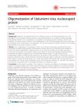 "Báo cáo y học: ""  Oligomerization of Uukuniemi virus nucleocapsid protein"""