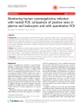 """Báo cáo y học: """" Monitoring human cytomegalovirus infection with nested PCR: comparison of positive rates in plasma and leukocytes and with quantitative PCR"""""""