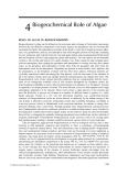 Algae: Anatomy, Biochemistry, and Biotechnology - Chapter 4