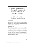 Hazard Assessment of Inorganic Metals and Metal Substances in Terrestrial Systems