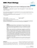"báo cáo khoa học: ""  QTL mapping of agronomic traits in tef [Eragrostis tef (Zucc) Trotter]"""