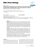 """báo cáo khoa học: """" UV-B-induced signaling events leading to enhanced-production of catharanthine in Catharanthus roseus cell suspension cultures"""""""