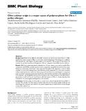 "báo cáo khoa học: "" Olive cultivar origin is a major cause of polymorphism for Ole e 1 pollen allergen"""