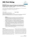 "báo cáo khoa học: ""  Arabidopsis thaliana outer ovule integument morphogenesis: Ectopic expression of KNAT1 reveals a compensation mechanism"""