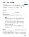 "báo cáo khoa học: "" The IBR5 phosphatase promotes Arabidopsis auxin responses through a novel mechanism distinct from TIR1-mediated repressor degradation"""
