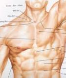 Căng thẳng cơ bắp