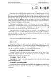 Bài giảng ASP.NET của Nguyễn Sơn Hải về thủ thuật lập trình
