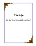 Tiểu luận: Bảo hiểm xã hội Việt Nam