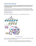 Tìm hiểu cách làm việc của DNS