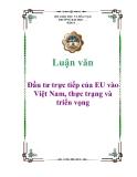 Luận văn: Đầu tư trực tiếp của EU vào Việt Nam, thực trạng và triển vọng