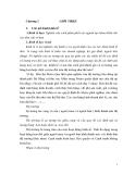 Kinh tế vi mô-Chương 1: Giới thiệu