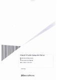 Báo cáo tài chính công ty cổ phần Hoàng Anh Gia Lai_Năm tài chính kết thúc ngày 31 tháng 12 năm 2010