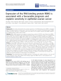 "Báo cáo hóa học: "" Expression of the RNA-binding protein RBM3 is associated with a favourable prognosis and cisplatin sensitivity in epithelial ovarian cancer"""