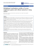 "Báo cáo hóa học: "" Multiplexed methylation profiles of tumor suppressor genes and clinical outcome in lung cancer"""