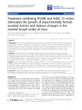 """Báo cáo hóa học: """" Treatment combining RU486 and Ad5IL-12 vector attenuates the growth of experimentally formed prostate tumors and induces changes in the sentinel lymph nodes of mice"""""""