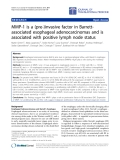 """Báo cáo hóa học: """" MMP-1 is a (pre-)invasive factor in Barrettassociated esophageal adenocarcinomas and is associated with positive lymph node status"""""""