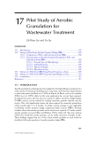 Wastewater Purification: Aerobic Granulation in Sequencing Batch Reactors - Chapter 17 (end)