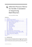 Wastewater Purification: Aerobic Granulation in Sequencing Batch Reactors - Chapter 6