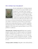 Phân vi sinh Biogro trong sx nông nghiệp sạch