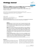 """Báo cáo sinh học: """"   Expression of RNA virus proteins by RNA polymerase II dependent expression plasmids is hindered at multiple steps"""""""