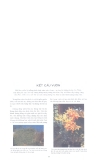 Cổ học Trung Hoa trong Nghệ thuật kiến trúc part 9