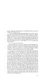Địa lý tự nhiên đại cương tâp 3 part 6