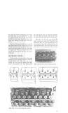 Sửa chữa  - bảo trì máy tàu và hệ thống điện part 6