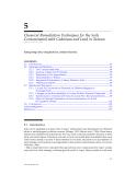 ENVIRONMENTAL RESTORATION of METALSCONTAMINATED SOILS - CHAPTER 5