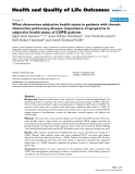 """báo cáo hóa học: """"  What determines subjective health status in patients with chronic obstructive pulmonary disease: importance of symptoms in subjective health status of COPD patients"""""""