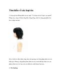 Tìm hiểu về các loại tóc