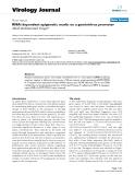"Báo cáo sinh học: "" RNAi dependent epigenetic marks on a geminivirus promoter"""