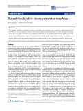 "Báo cáo hóa học: ""Biased feedback in brain-computer interfaces"""