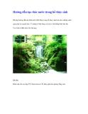 Hướng dẫn tạo thác nước trong hồ thủy sinh