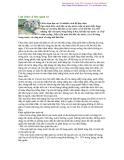 Lựa chọ và bảo quản cá