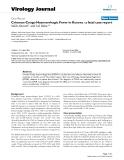 "Báo cáo hóa học: ""  Crimean-Congo Haemorrhagic Fever in Kosova : a fatal case report"""