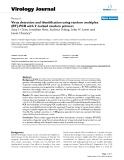 "Báo cáo hóa học: ""  Virus detection and identification using random multiplex (RT)-PCR with 3'-locked random primers"""