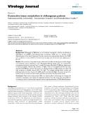 "Báo cáo hóa học: ""  Connective tissue metabolism in chikungunya patients"""