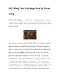 Hệ Thống Tưới Tự Động Cho Cây Thanh Long
