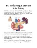 Bài thuốc Đông Y chữa đái tháo đường