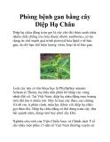 Phòng bệnh gan bằng cây Diệp Hạ Châu